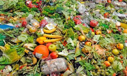 Estratégia Nacional e Plano de Ação de Combate ao Desperdício Alimentar