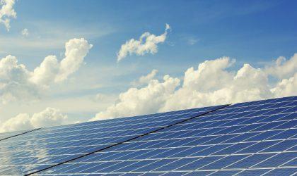 Estudo de Incidências Ambientais – Central Solar Fotovoltaica em Salvaterra de Magos