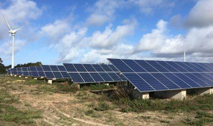 Estudo de Incidências Ambientais – Legalização do Parque Fotovoltaico de Picos Verdes