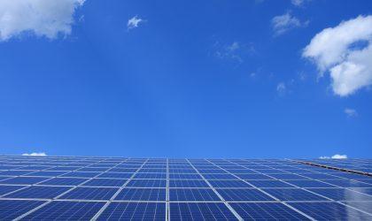Estudo de Incidências Ambientais – Central Solar Fotovoltaica em Palmela