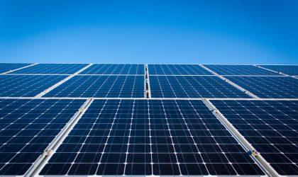 Estudo de Incidências Ambientais – Central Solar Fotovoltaica em Benavente