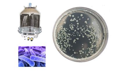 Prevenção e Controlo de Legionella – Indústria de Fabricação de Estruturas Metálicas