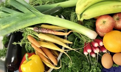 Análises de Resíduos de Pesticidas – Produtos alimentícios