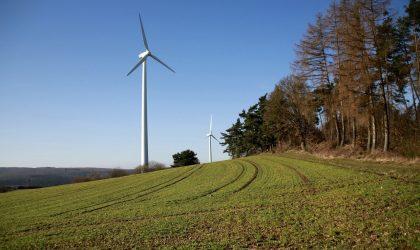 Monitorização de Sistemas Ecológicos – Sobreequipamento do Parque Eólico Fonte da Mesa