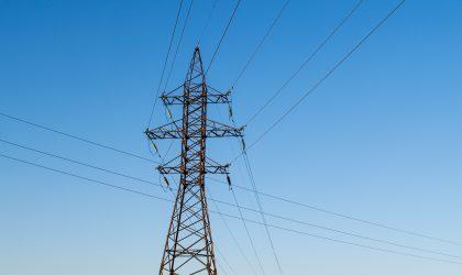 Monitorizações Avifauna (pré-construção) – Linha Elétrica do Carregado